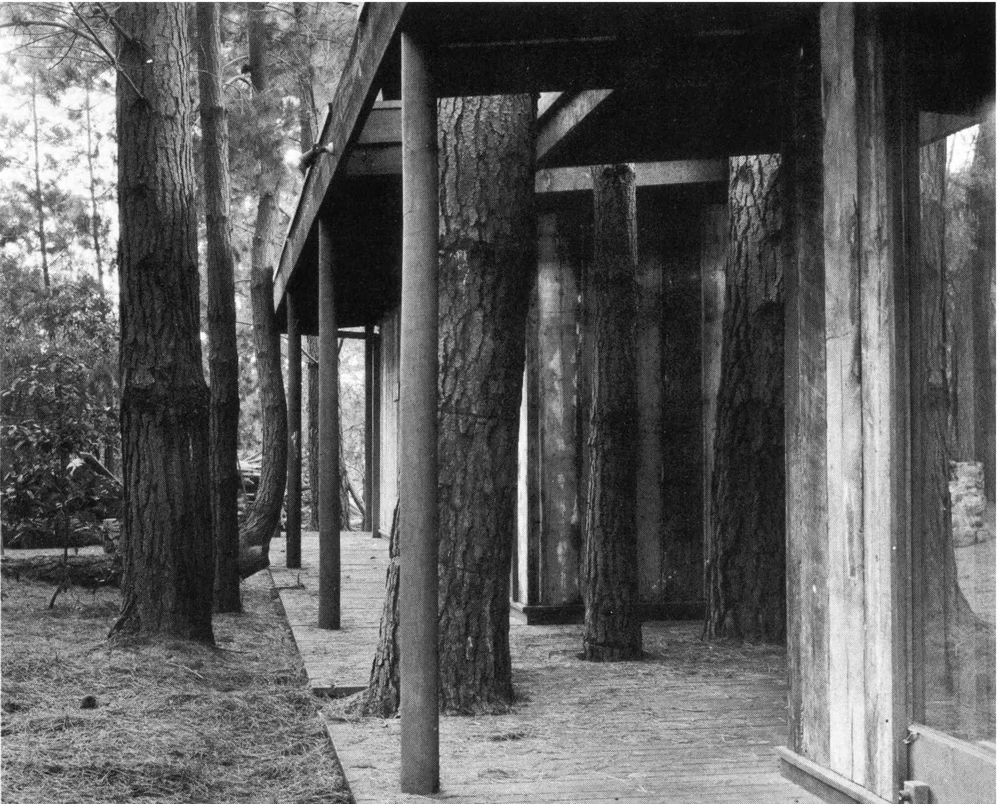 Marks House, Mt. Martha, built to accommodate existing trees Source: Knox